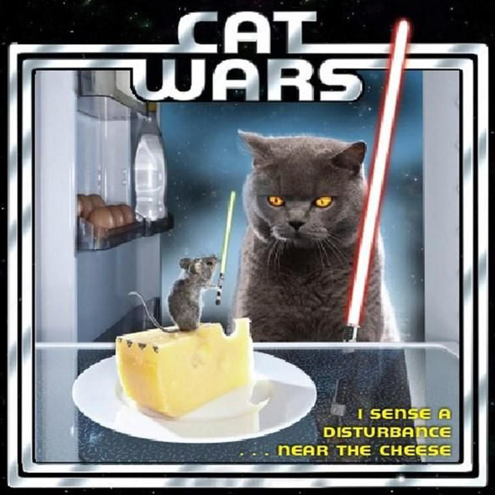 Cat Wars I Sense A Disturbance Near The Cheese Gift Book - - Sellers Publishing - Yellow Octopus