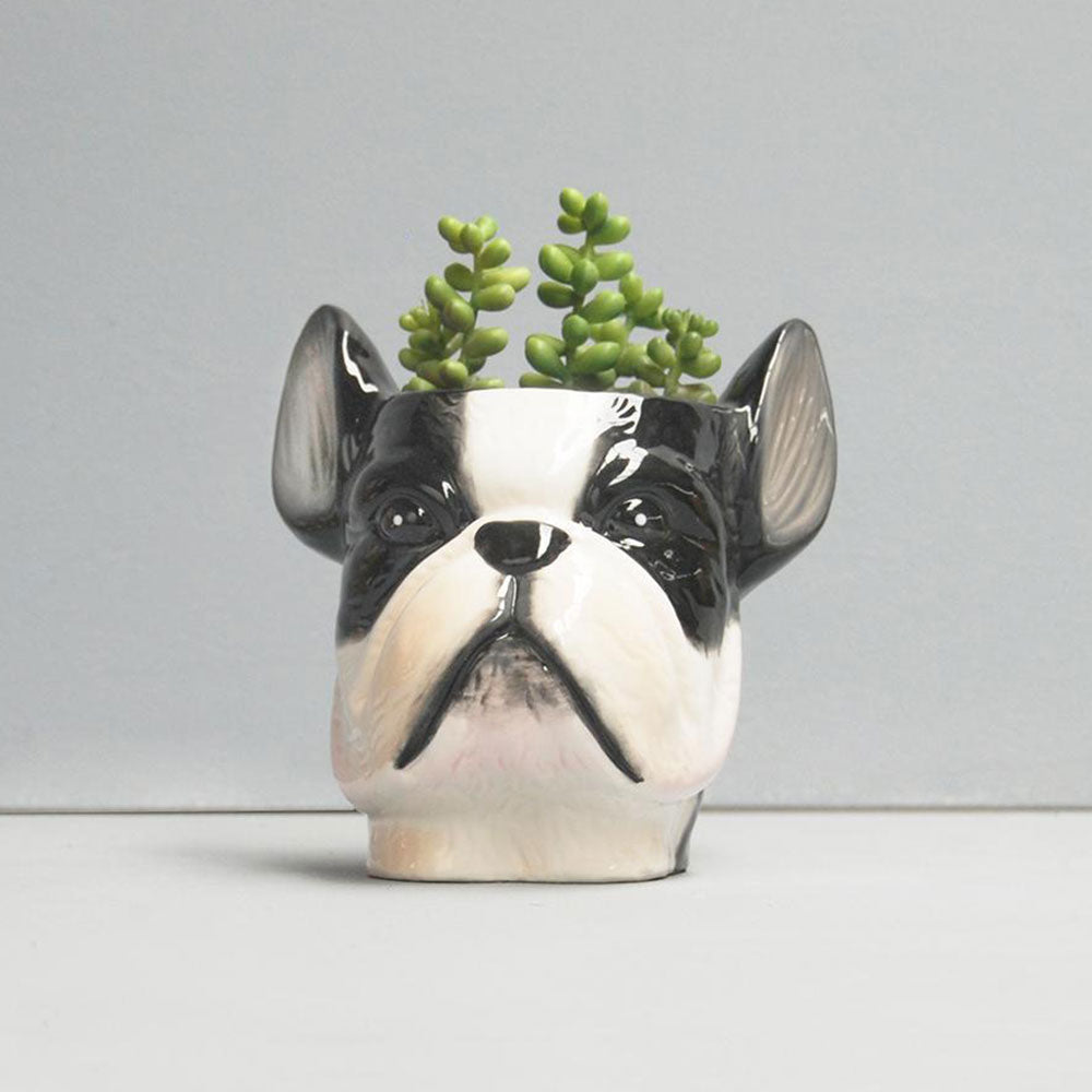 Ceramic Frenchie Planter Pot | White Moose