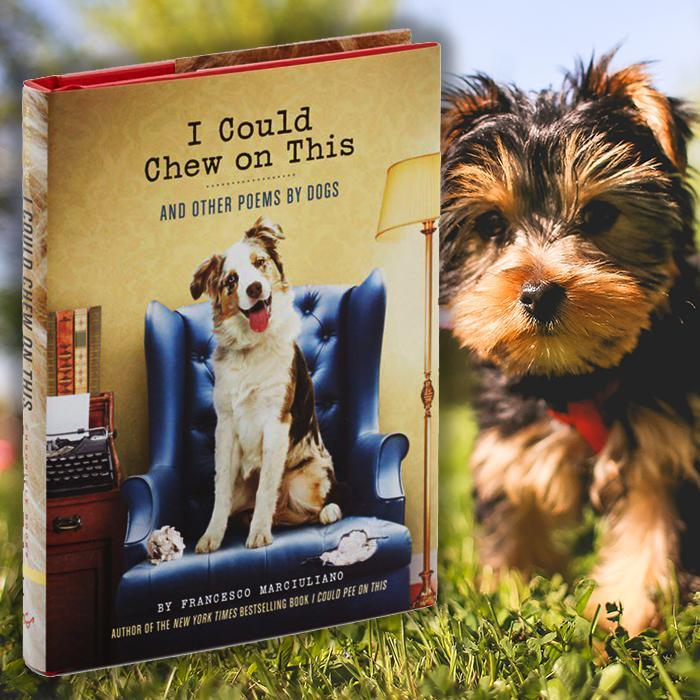 Chronicle Books 'I Could Chew On This' Dog Poetry Book