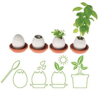 Eggling Crack & Grow Planter Kit with Tray - Basil - Eggling - Yellow Octopus
