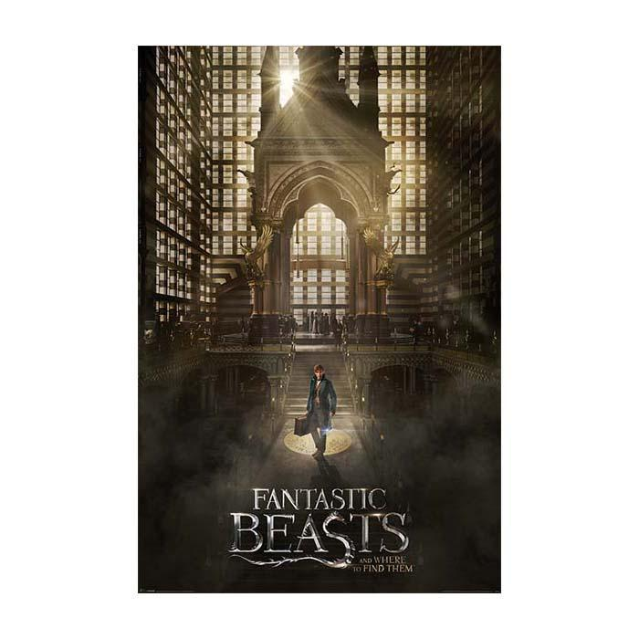 Fantastic Beasts And Where To Find Them Poster 61 x 91.5 cm - - Harry Potter - Yellow Octopus