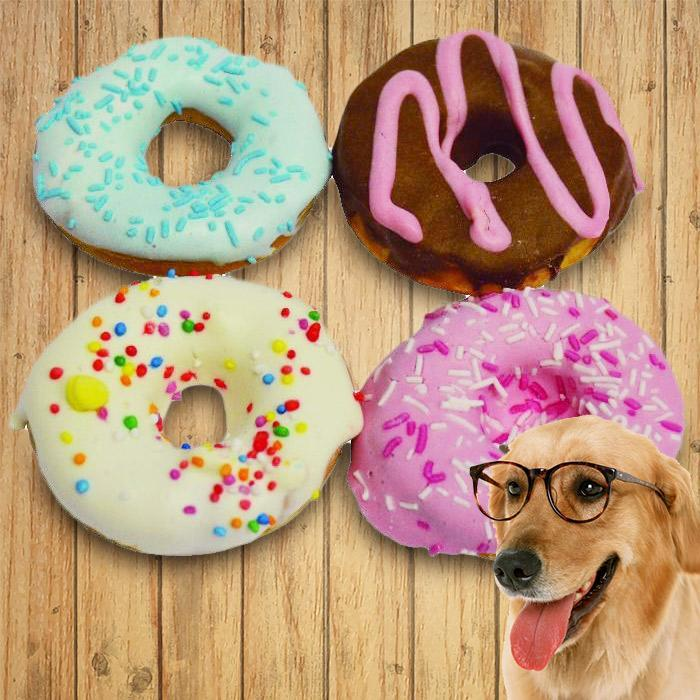 Huds & Toke Doggy Donut Treats - Pack of 4 - - Huds & Toke - Yellow Octopus