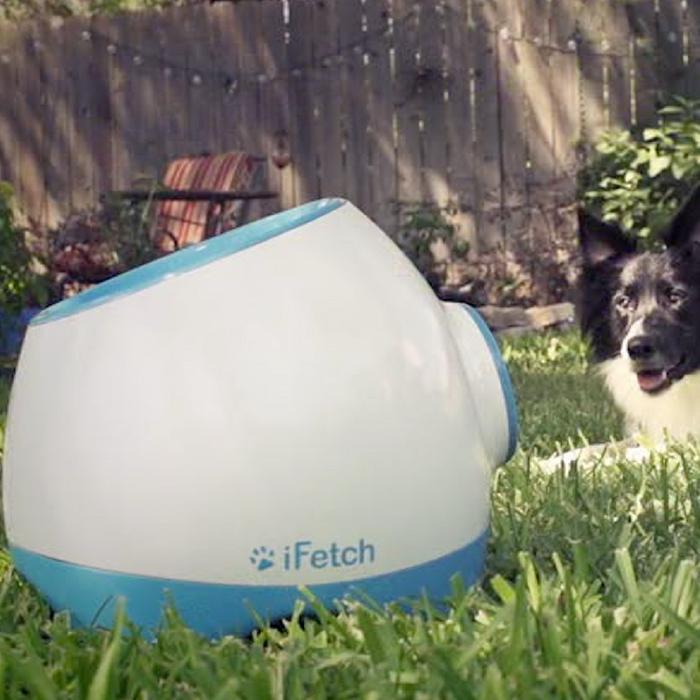 iFetch Too Interactive Dog Ball Launcher - - iFetch - Yellow Octopus