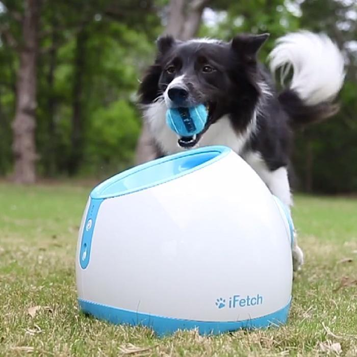 iFetch iFetch Too Interactive Dog Ball Launcher