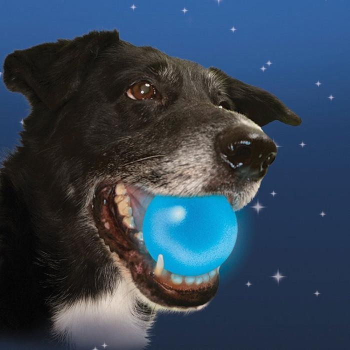 Nite Ize Nite Ize Meteorlight LED Dog Ball