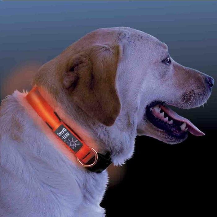Nite Ize NiteDawg LED Light-Up Dog Collar - Medium - Nite Ize - Yellow Octopus