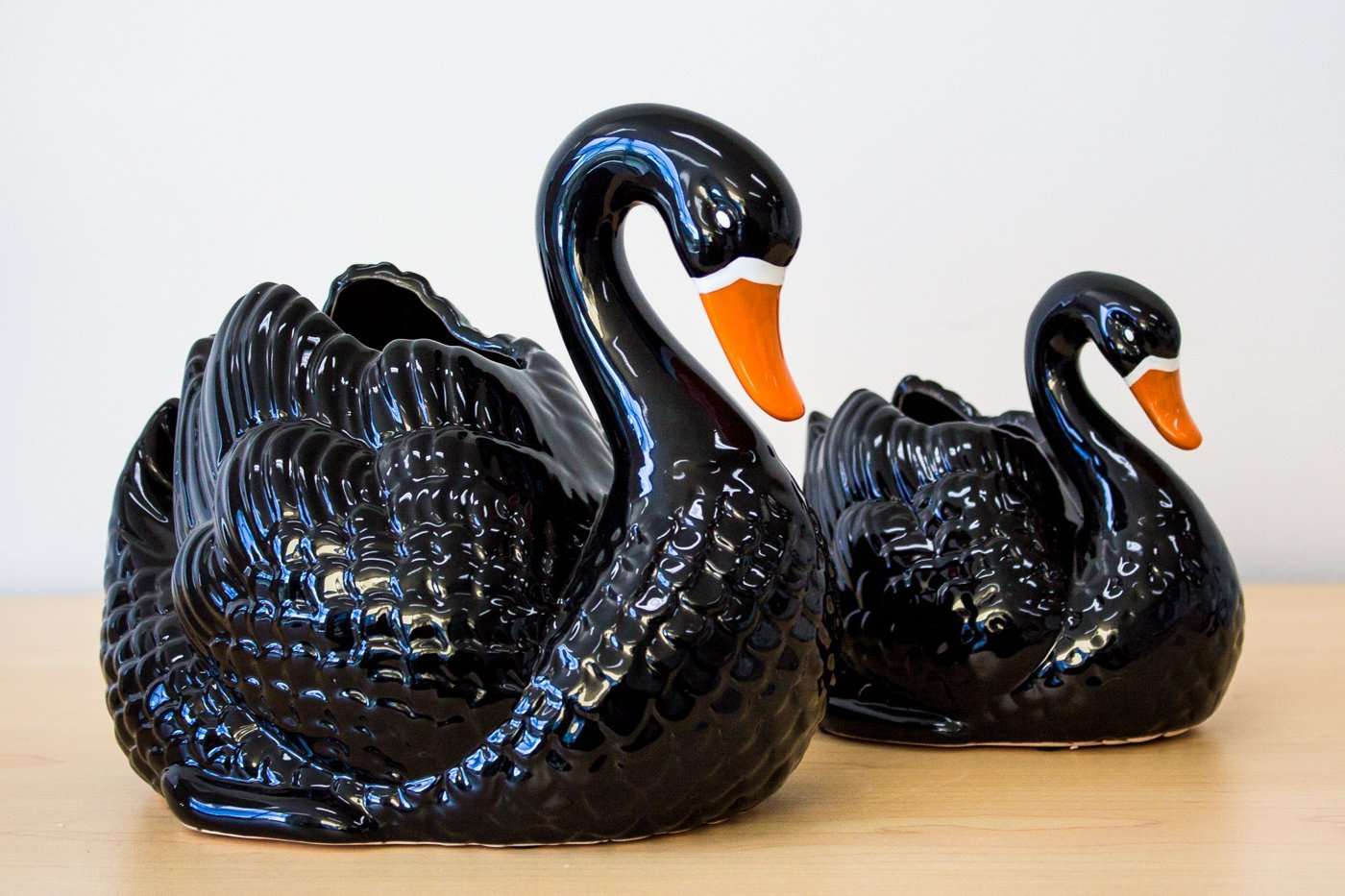 Outliving Black Swan Planter