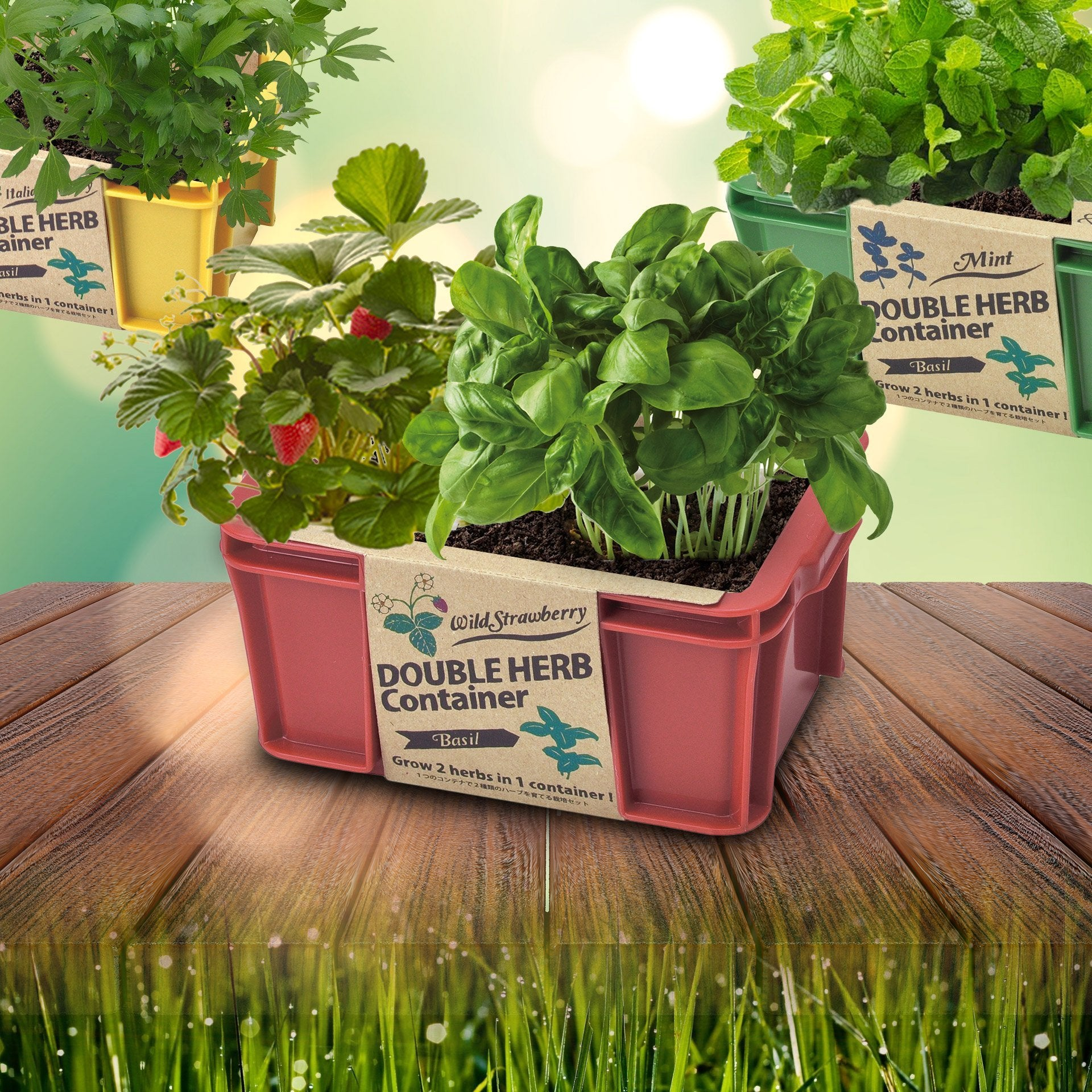 Outliving Double Herb Container - Grow Two Of Your Favourite Herbs