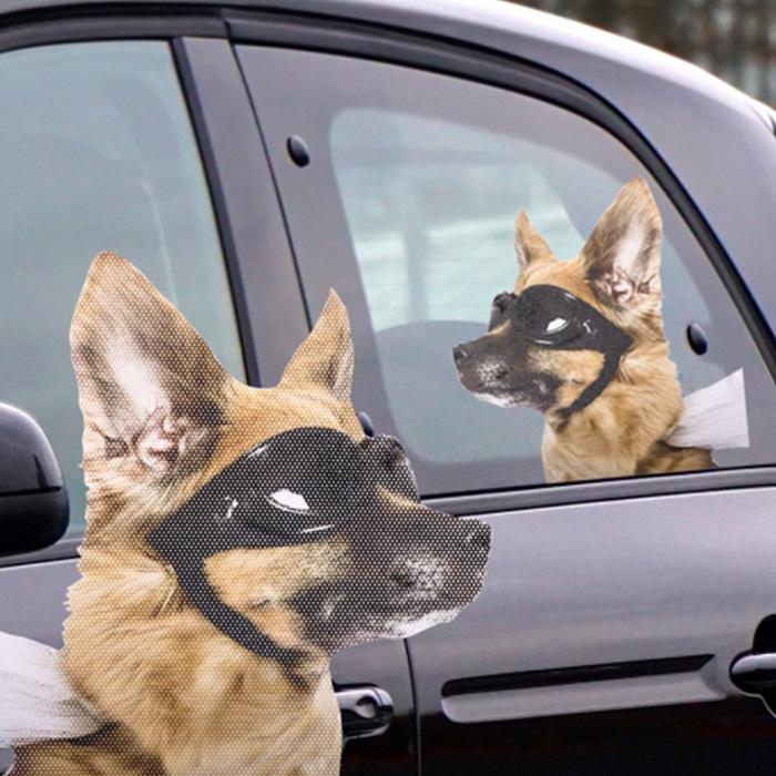 Ride with novelty car window decals dog