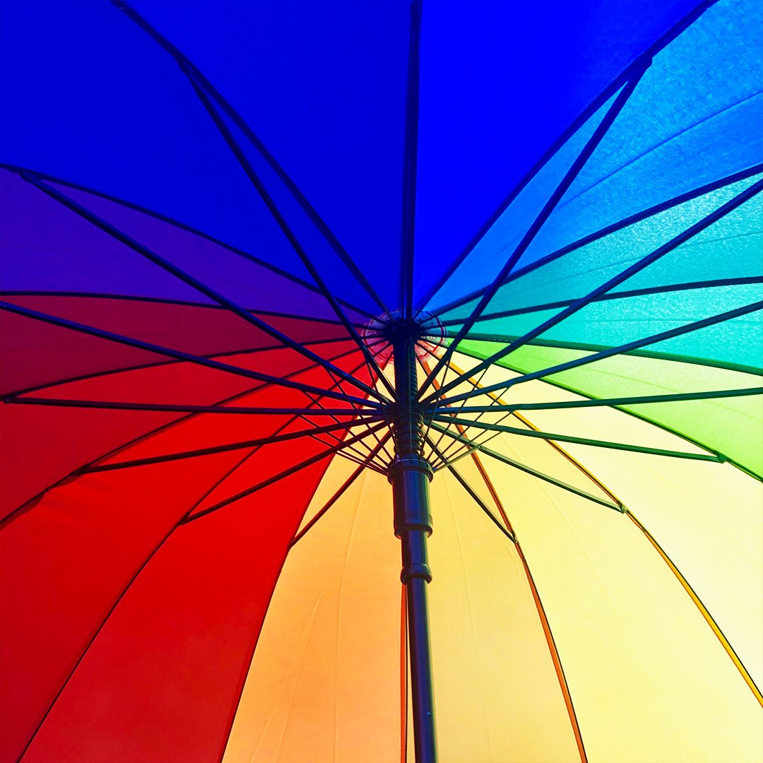 Rainbow Umbrella - - Yellow Octopus - Yellow Octopus