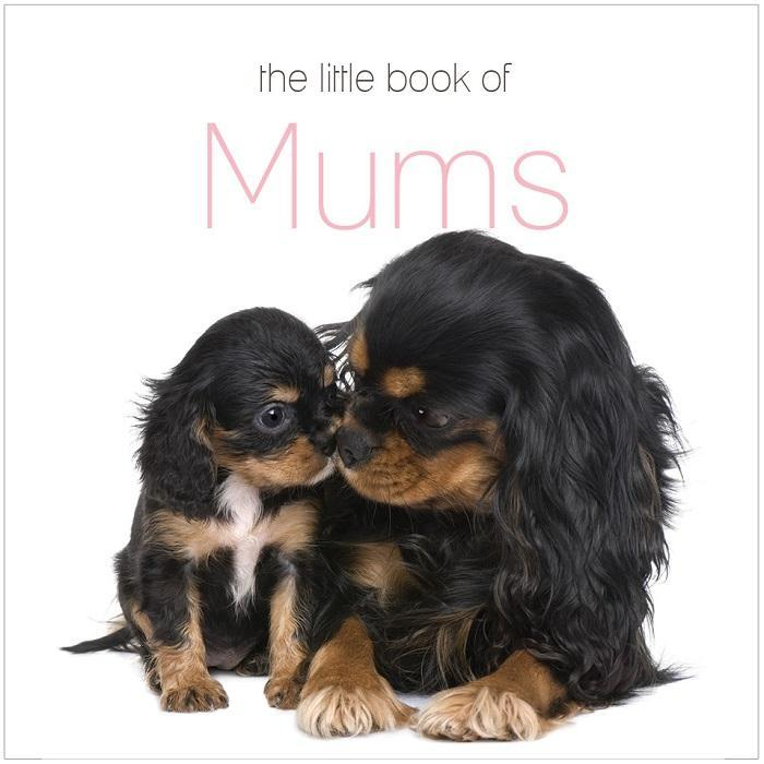 The Little Book Of Mums - - Yellow Octopus - Yellow Octopus