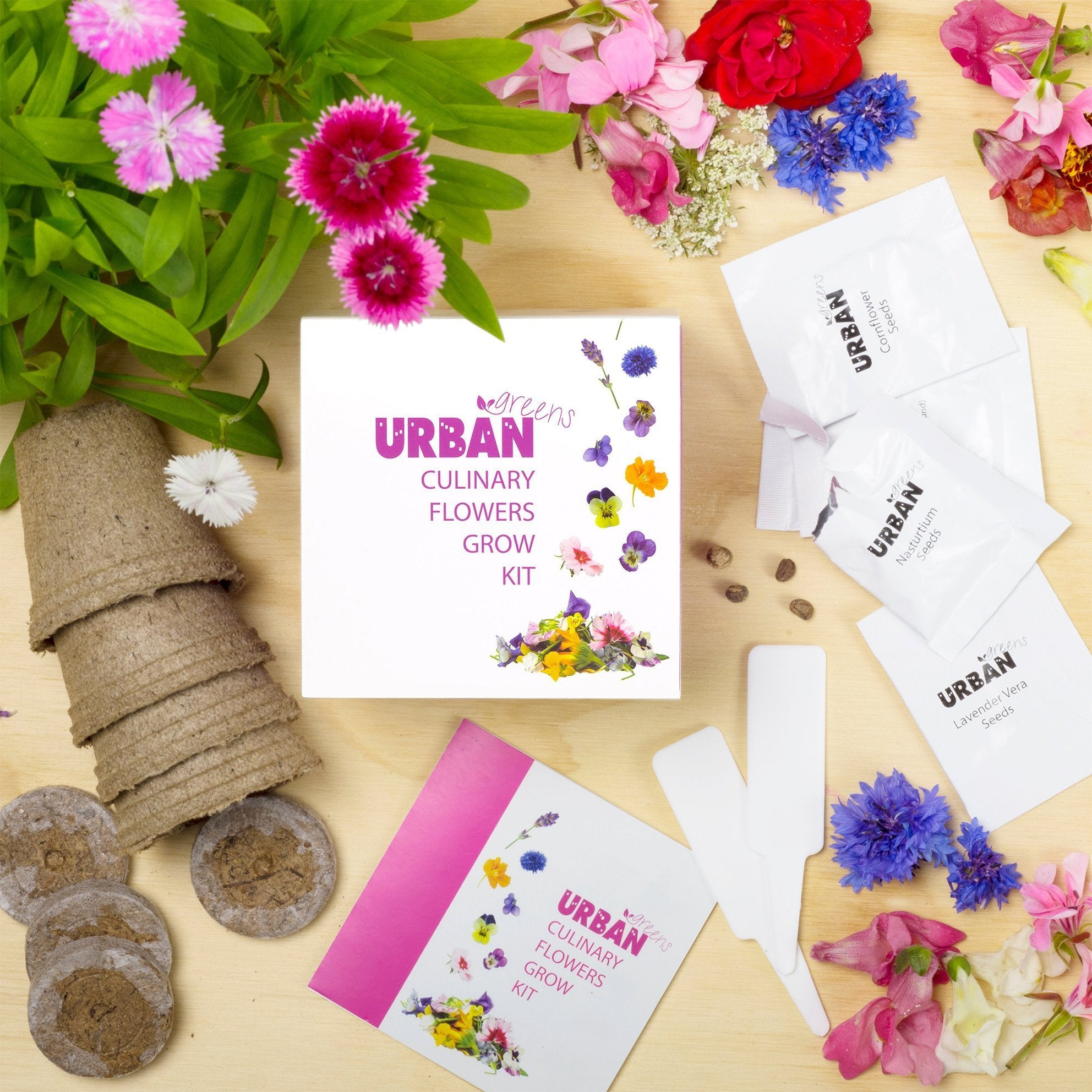 Urban Greens Herb Grow Kits - Culinary Flowers - Urban Greens - Yellow Octopus