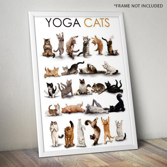 Yoga Cats Poster 61 x 91.5cm - - Yellow Octopus - Yellow Octopus