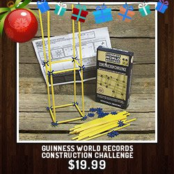 Guinness World Records Construction Challenge