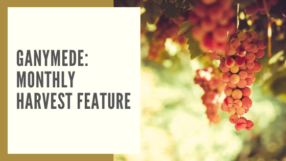 Ganymede: Monthly Harvest Feature