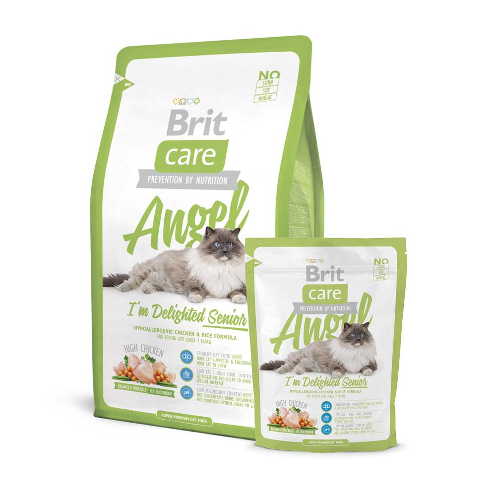 BritCare Angel Senior Cat Food Delivery in Malaysia