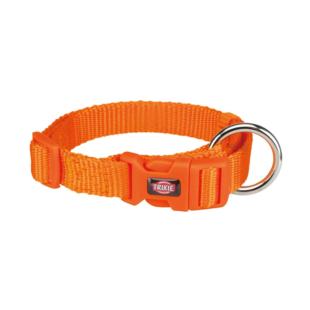 Premium Collar (Papaya)