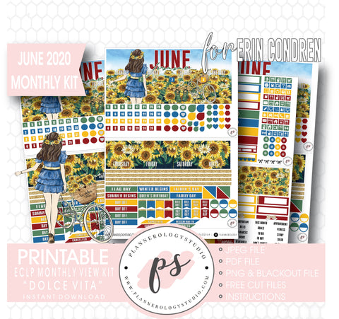 Dolce Vita June 2020 Monthly View Kit Digital Printable Planner Stickers (for use with Erin Condren) - Plannerologystudio