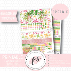Summer Fun ECLP Erin Condren June 2018 Monthly Kit Digital Printable Planner Stickers (PDF/JPG/PNG/Silhouette Cut File Freebie) - Plannerologystudio