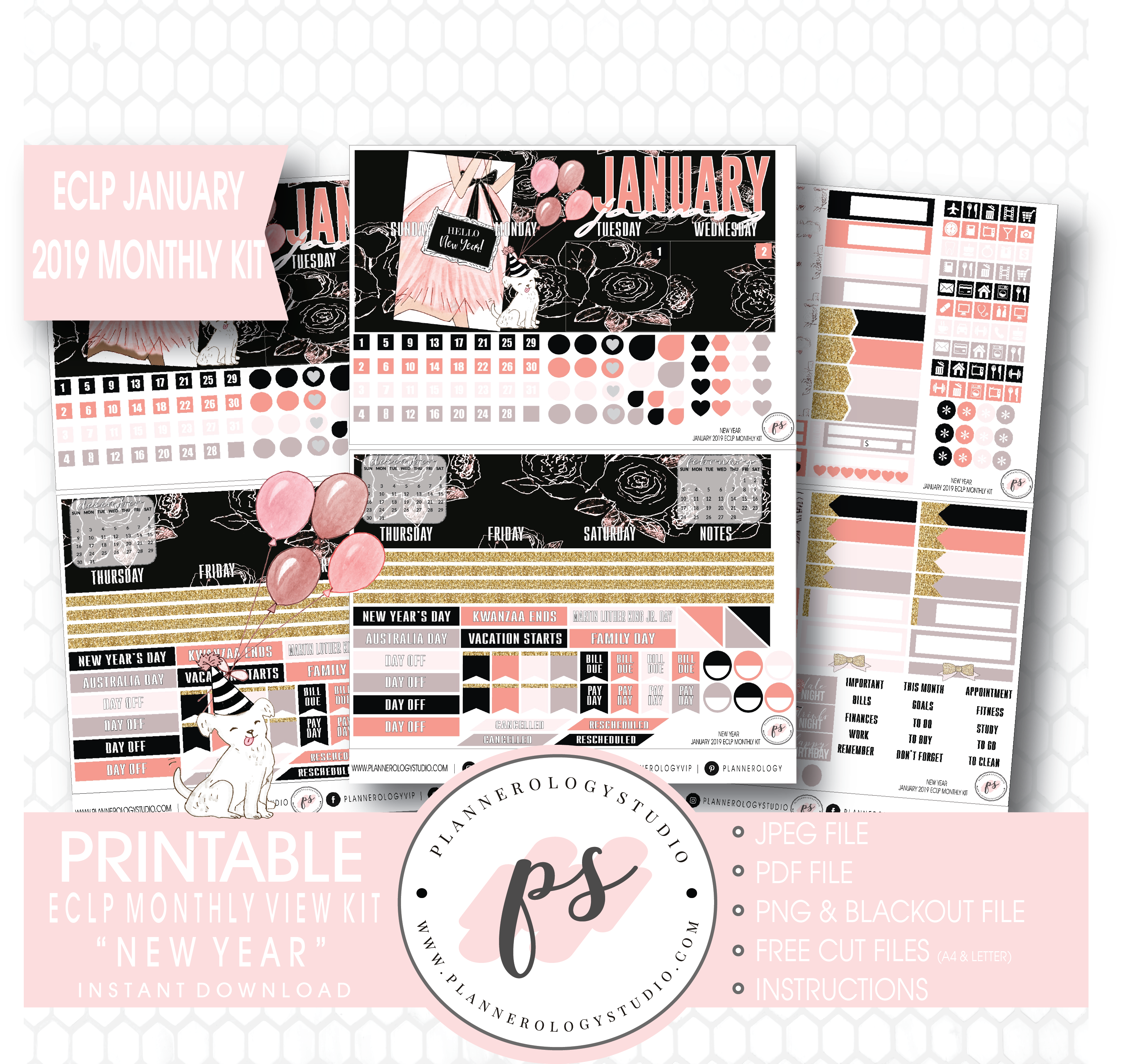 New Year January 2019 Monthly View Kit Digital Printable