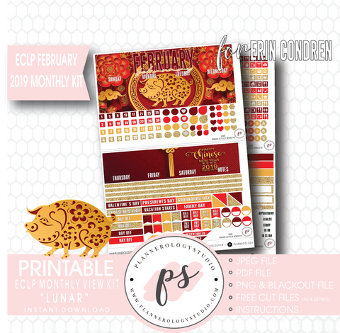 Lunar (Chinese New Year) February 2019 Monthly View Kit Digital Printable Planner Stickers (for use with Erin Condren) - Plannerologystudio