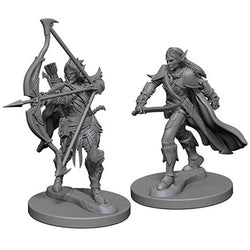 Pathfinder Deep Cuts Miniatures - Guerriero Elfo Maschio