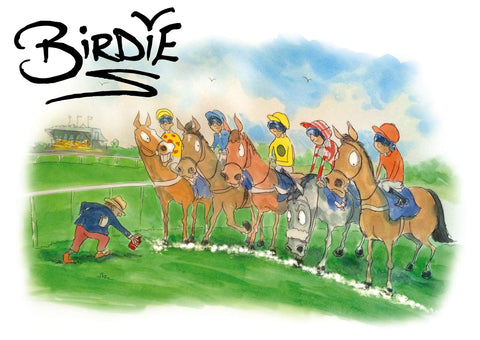 Birdie: The Best of Darren Bird