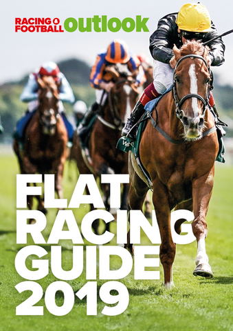 RFO Flat Racing Guide 2019 <br/>*** Pre-order Now ***