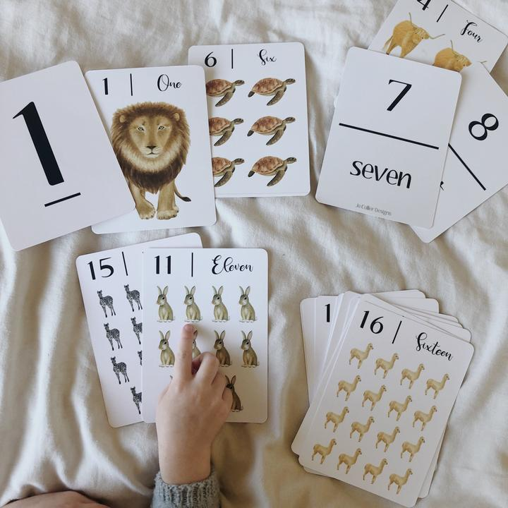 '123' Nature Flash Cards