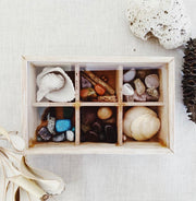 Tinker Tray Nature Box