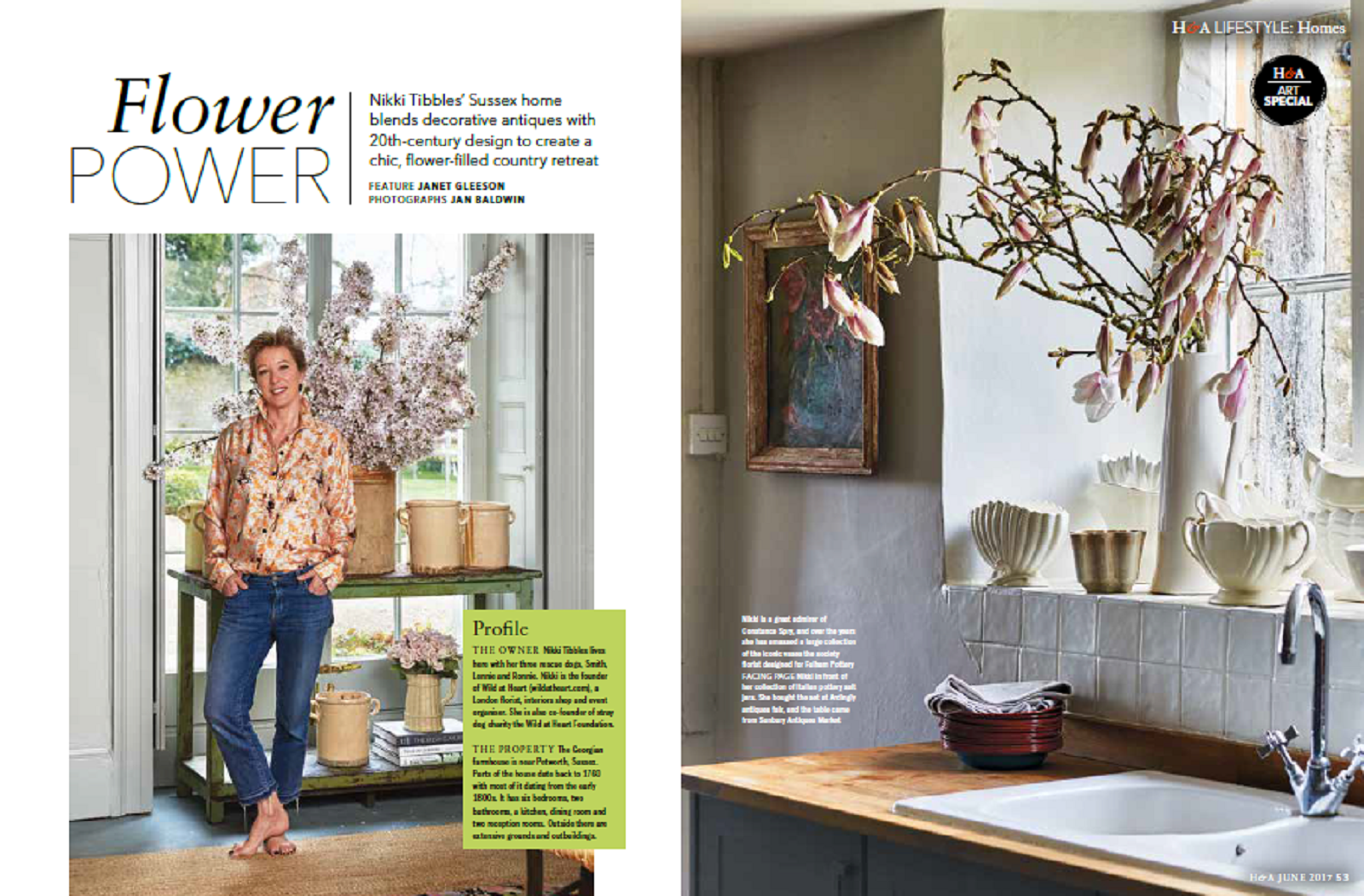 At Home with Nikki, Homes & Antiques Magazine