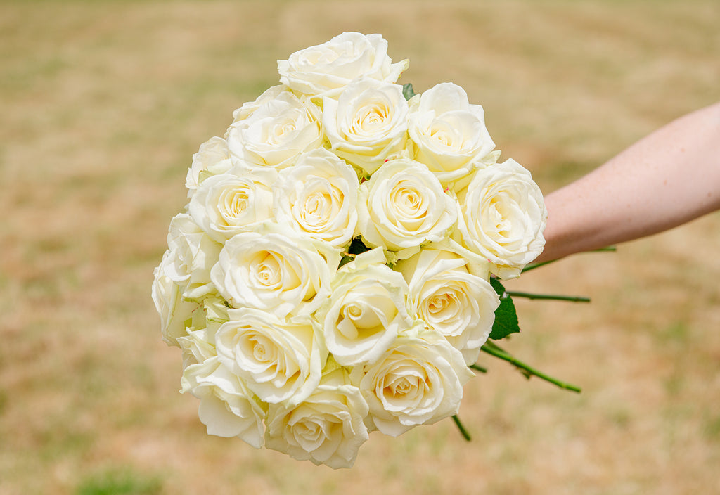 White Rose Bunch