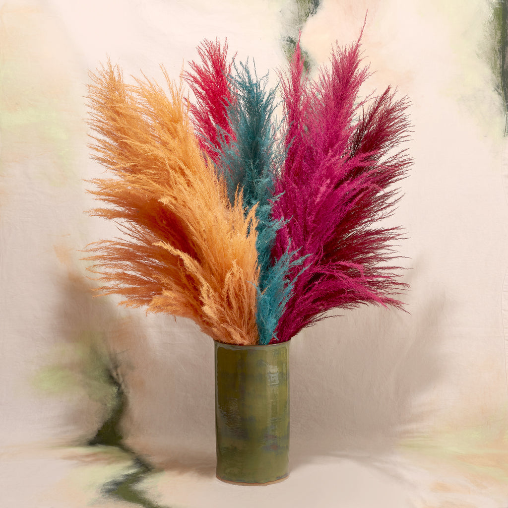 Pampas Grass in Assorted Colours