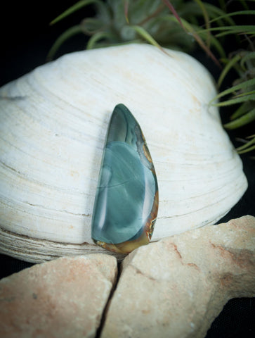 Blue Mountain Jasper Cabochon