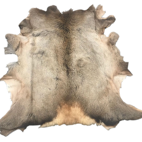 Hair on Elk Hide - First grade