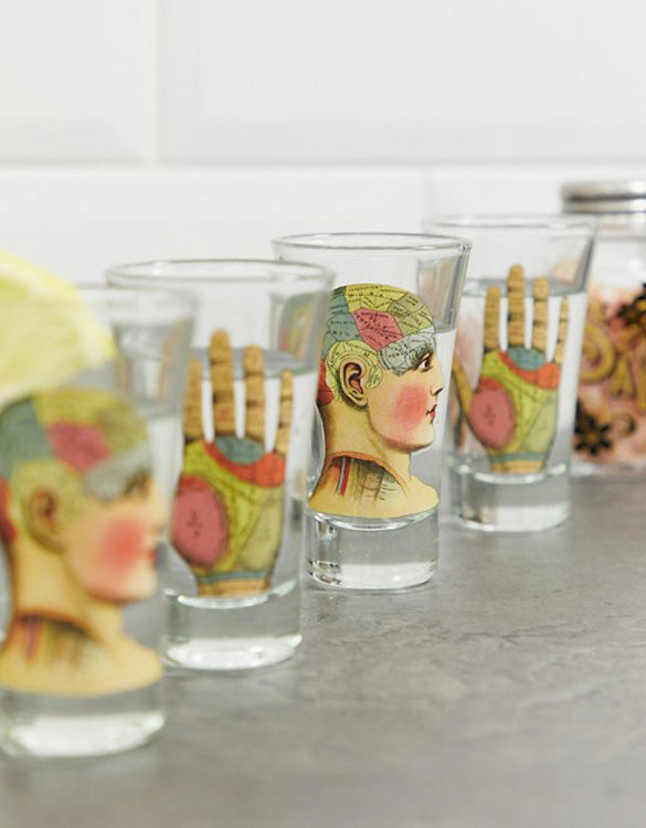 Tequila Slammer Phrenology Shot Glasses Set | Rebel Rebel Bruges