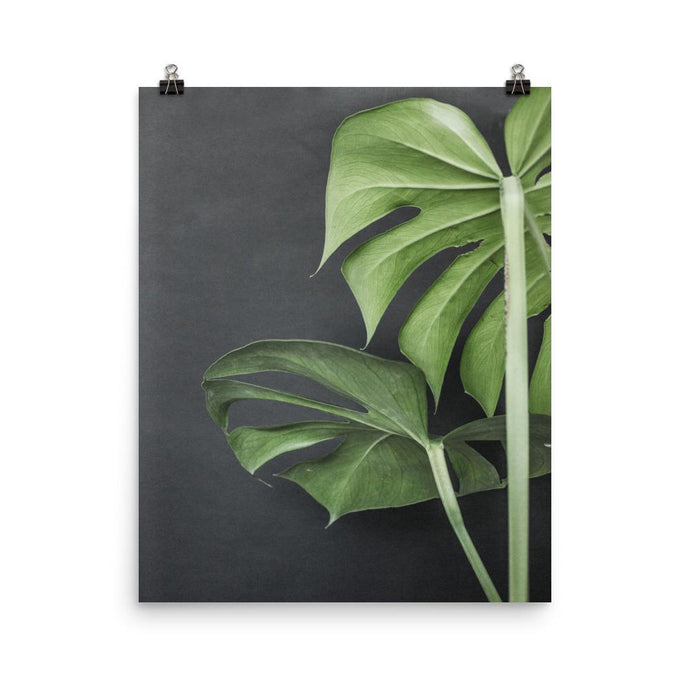 Tropical Modern Poster