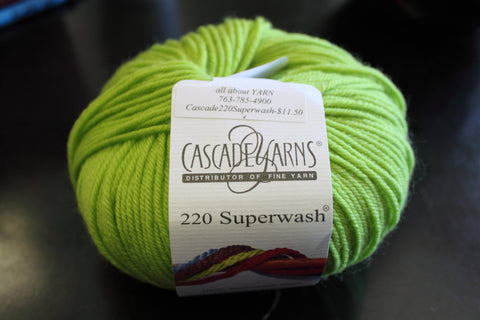 Cascade 220 Superwash Yarn Color 887