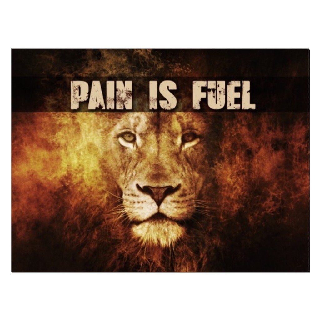 Pain is Fuel Canvas - Seven Mania