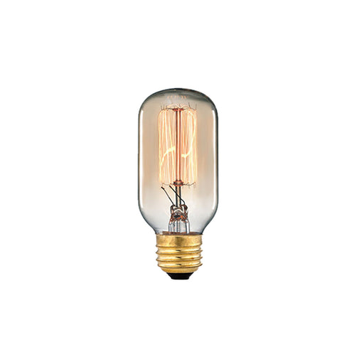 MEDIUM BASE 60-WATT INCANDESCENT BULB