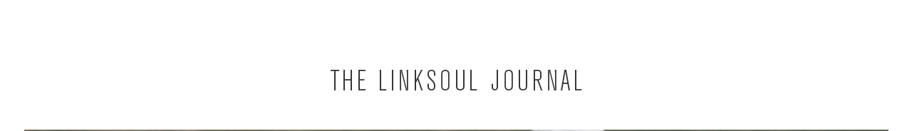 The Linksoul Journal