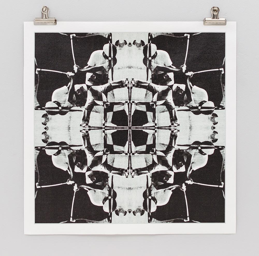 THE HAWK MANDALA PRINT BY JESSE HAGGE