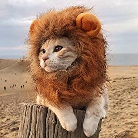 Pet Cat Dog Emulation Lion Hair Mane Ears- Beast Breed - EZShopping