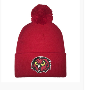 COLLEGE BEANIES - Out of the Box NY Gifts