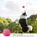 Magic Automatic Roller Ball For Dogs