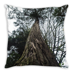 Towering Tree Throw Pillow Gooten - Natural Lynx