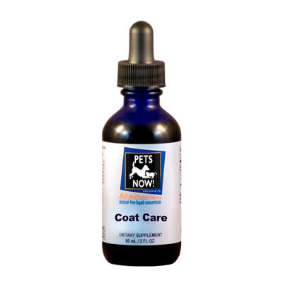 Pets Now! Coat Care & Digestive Support Cedar Bear - Natural Lynx