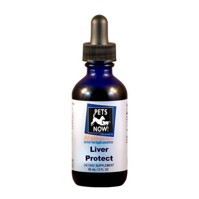 Pets Now! Liver Protect Cedar Bear - Natural Lynx
