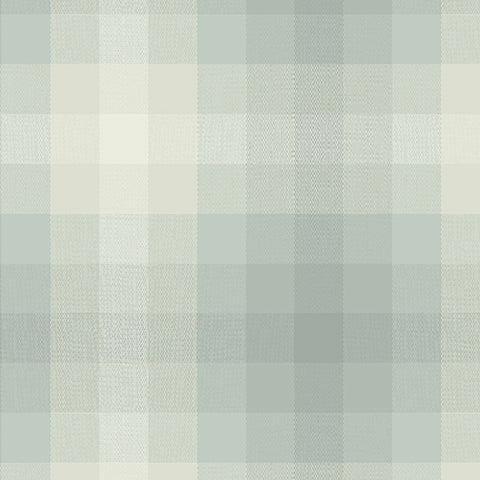 Manufacturer: Andover Fabrics Designer: Alison Glass Collection: Kaleidoscope - Stripes and Plaids Print Name: Plaid in Cloud Material: 100% Cotton Weight: Quilting  SKU: WV-9541-CLOUD Width: 44 inches