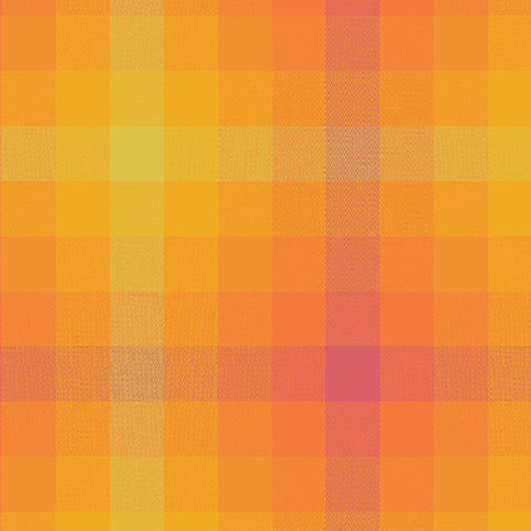 Manufacturer: Andover Fabrics Designer: Alison Glass Collection: Kaleidoscope - Stripes and Plaids Print Name: Plaid in Sunrise Material: 100% Cotton Weight: Quilting  SKU: WV-9541-MARMALADE Width: 44 inches